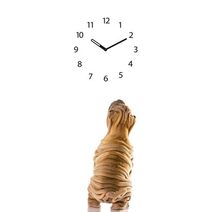 Orologio da parete Time Art Dog Clock 20 cm x 60 cm