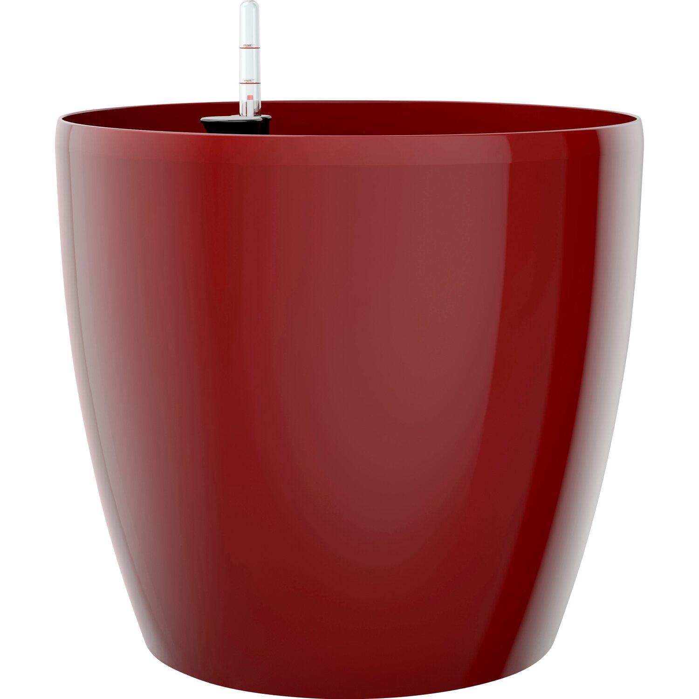 Emsa vaso da interno casa brillant 36 cm x 33 cm rosso rubino acquista da obi - Vaso da interno ...
