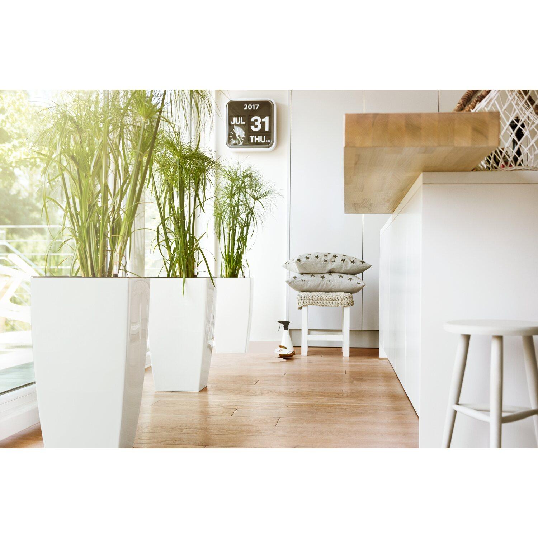 Emsa vaso da interno casa brillant 30 cm x 30 cm x 58 cm rosso grigio acquista da obi - Vaso da interno ...