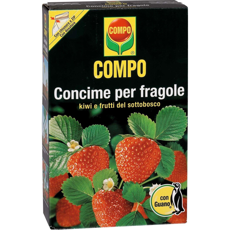 Compo concime per fragole 1 kg acquista da obi for Concime per gerani fatto in casa