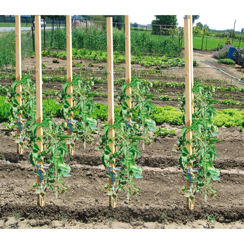 Sostegni Per Pomodori In Vaso tutore legno sostegno per piante 150 cm