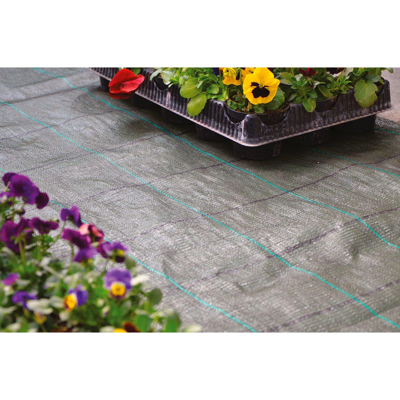 Tessuto pacciamatura h 1 05 m al taglio acquista da obi for Obi taglio legno