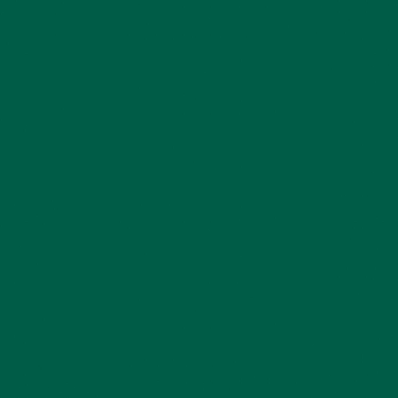 Parete Grigio Ghiaccio : Obi smalto lucido verde inglese ml acquista da