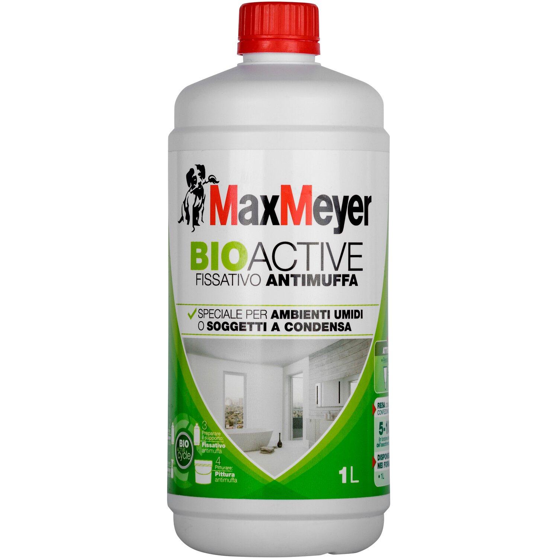 Maxmeyer fissativo igienizzante antimuffa bioactive 1 l for Fissativo antimuffa