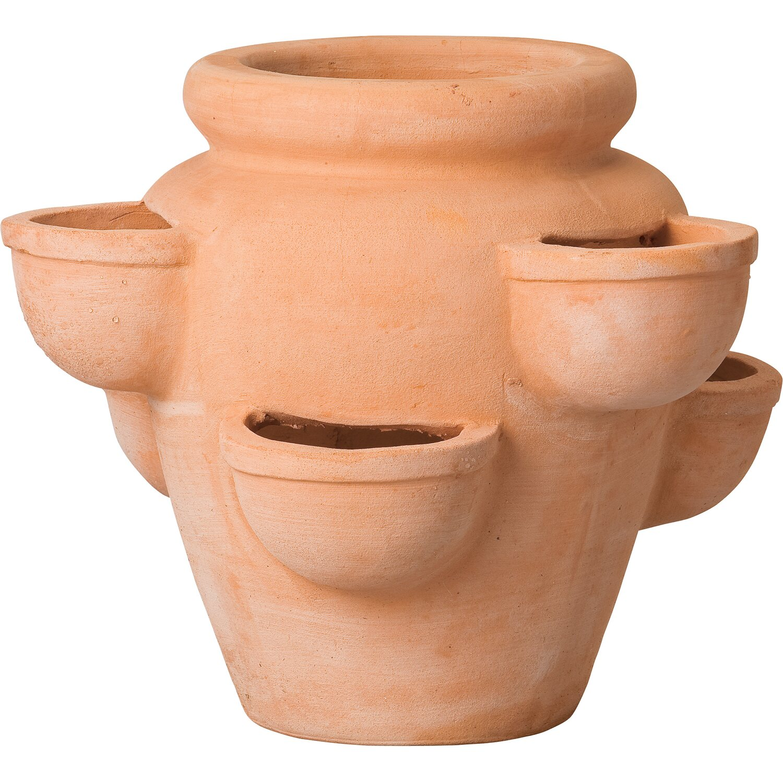 Vasi In Terracotta Per Giardino vaso per fragole in terracotta tondo Ø 34 cm x 27 cm | obi