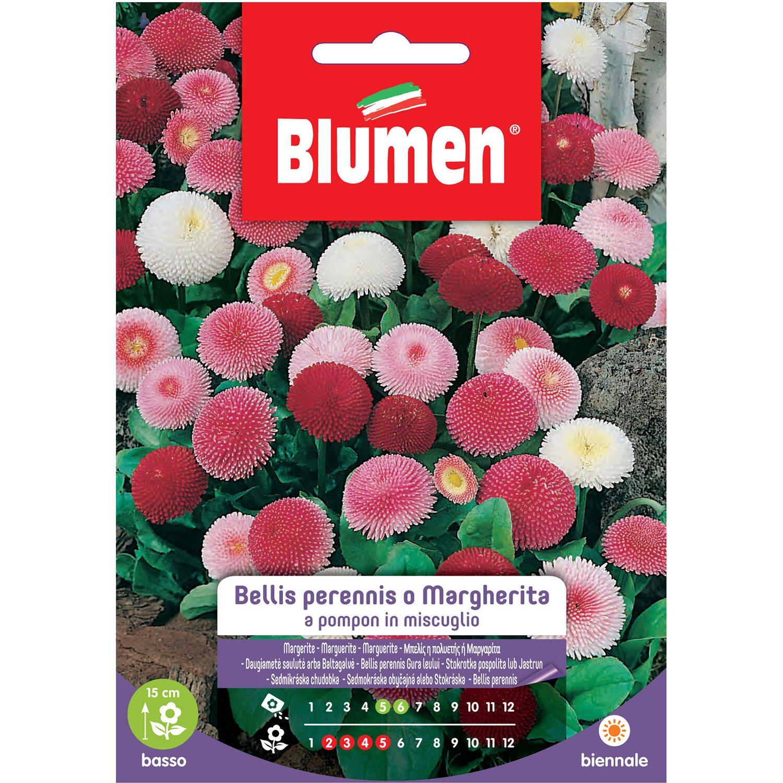 blumen aus pompons, blumen bellis perennis o margherita pompon acquista da obi, Design ideen