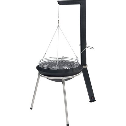 Jamestown Barbecue Swing