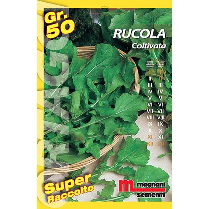 Semi orto big Rucola coltivata 50 g