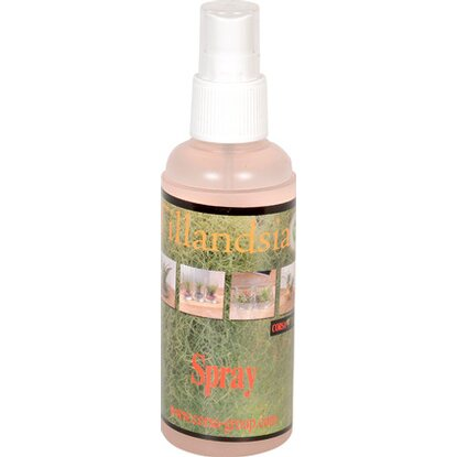 Tillandsia Spray mini 125 ml