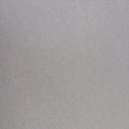 Piastrella gres porcellanato loft grigio 32 5 cm x 32 5 cm for Obi piastrelle